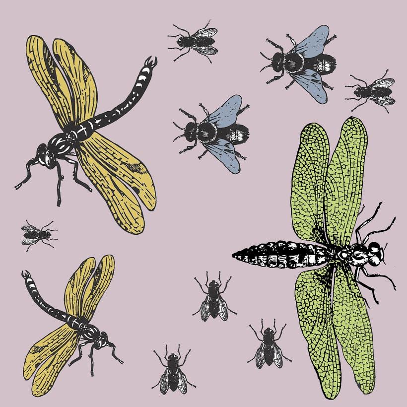 Insectos: Diseño de estampados textiles 1