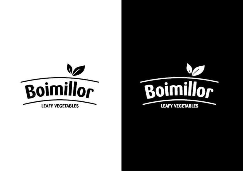 Rediseño etiquetas Boimillor 12