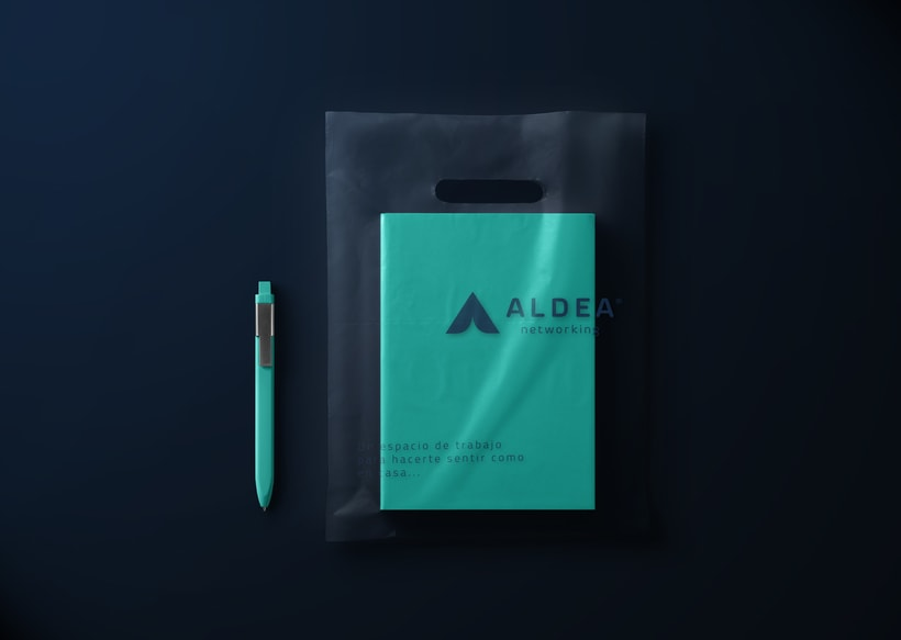 Aldea Networking 2