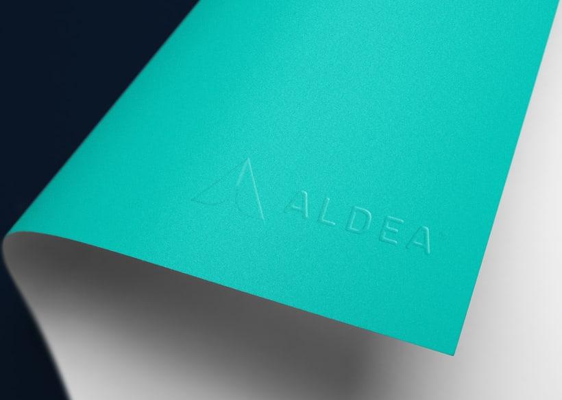 Aldea Networking 1