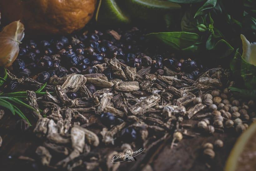 Mi Proyecto del curso: Ginebra Blue y sus botánicos 1