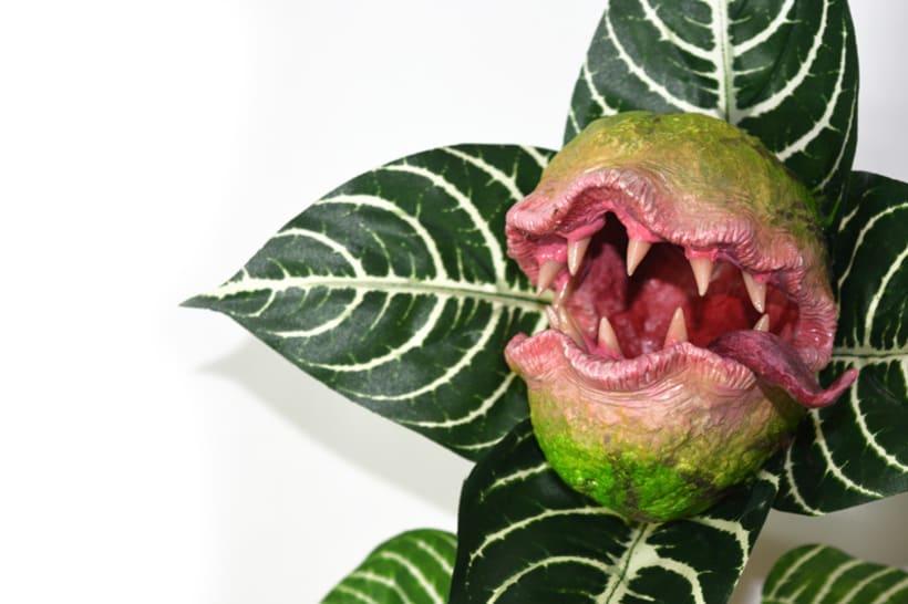 Plantas carnívoras artesanales 4