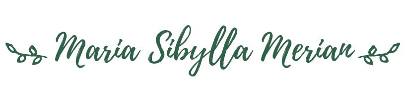 Maria sibylla - Principia Magazine 0