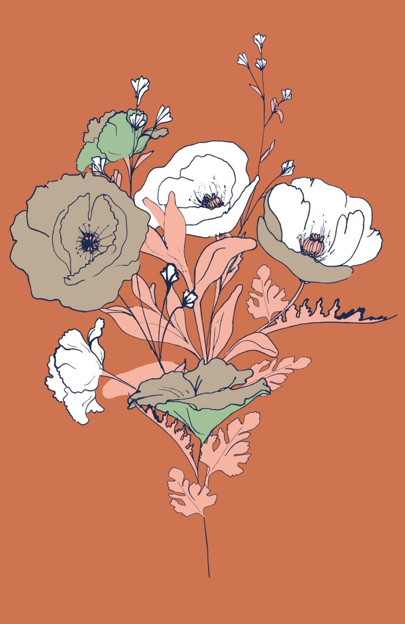 """Ilustracion """"Amapolas"""" -1"""