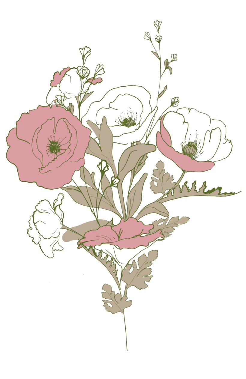 """Ilustracion """"Amapolas"""" 1"""