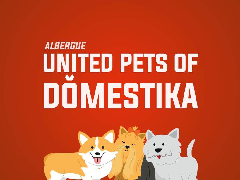 INSTAFRIENDS - UNITED PETS OF DOMESTIKA 0