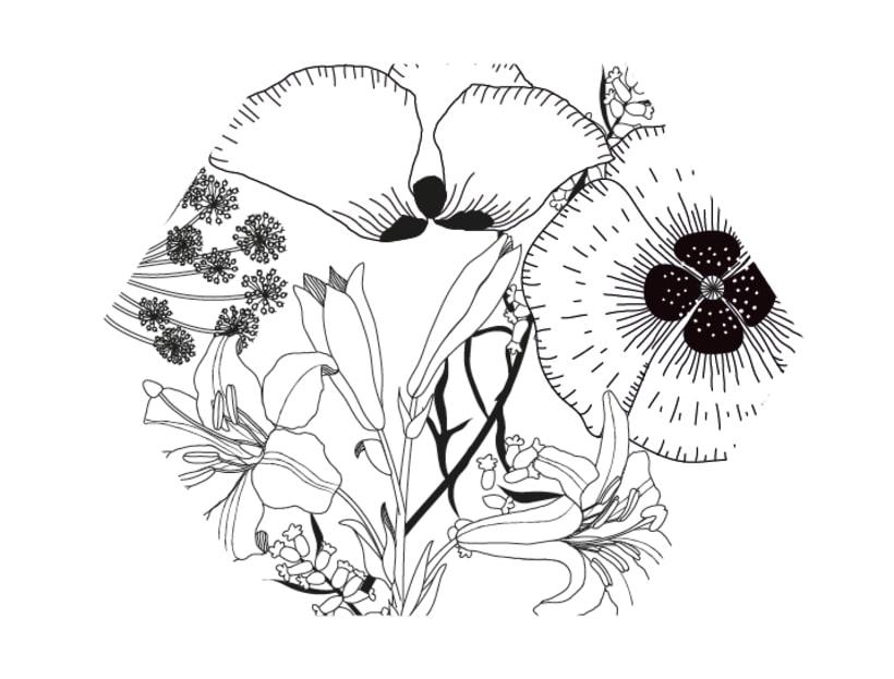 Mi Proyecto del curso: Diseño e ilustración de un Fanzine 15