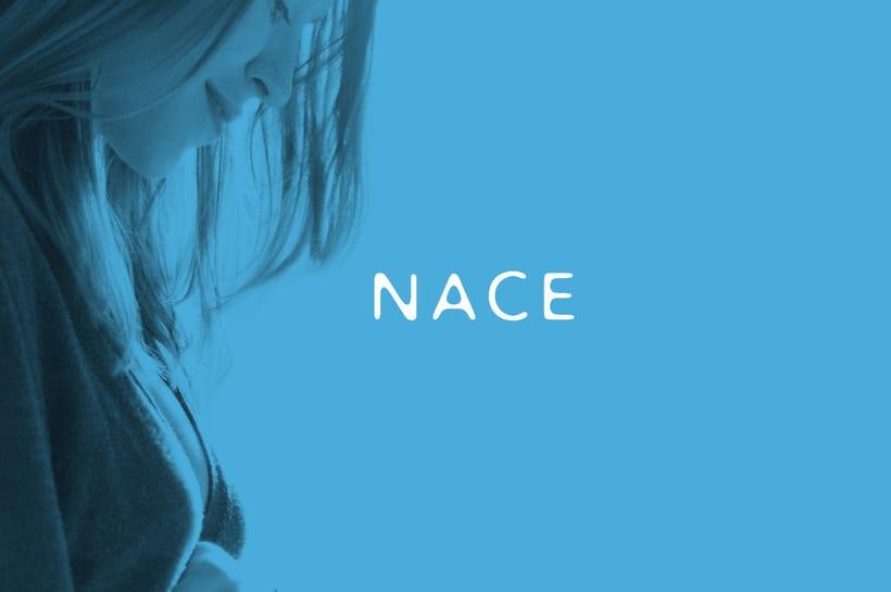 N A C E (I.V.I.)  1