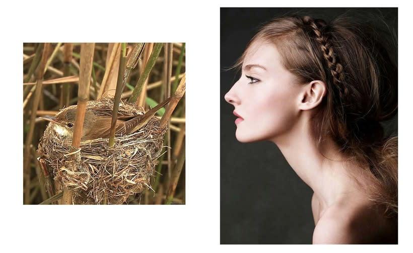 """Introducción a la ilustración con tinta china: """"Pájaros en la cabeza"""" 0"""