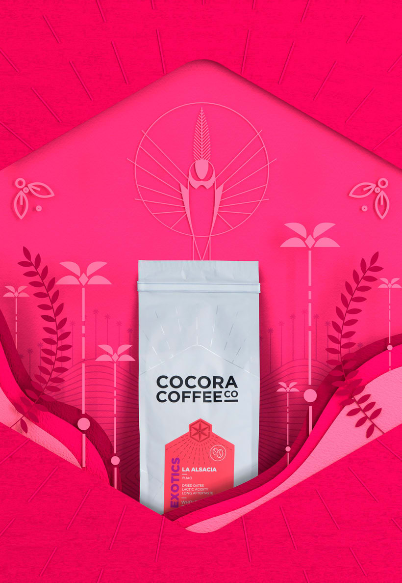COCORA COFFEE 10