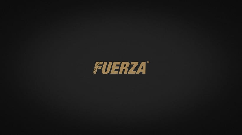 FUERZA 17