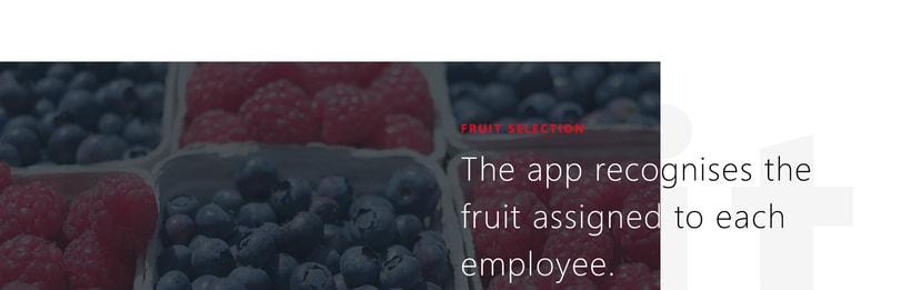 UI / UX App recolección fruta en Marruecos 7