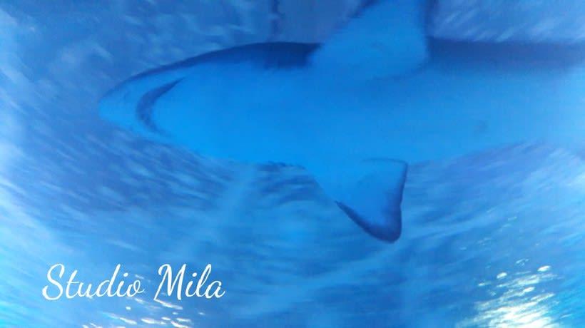 La magia del mar #mar #Mirada #azul 4