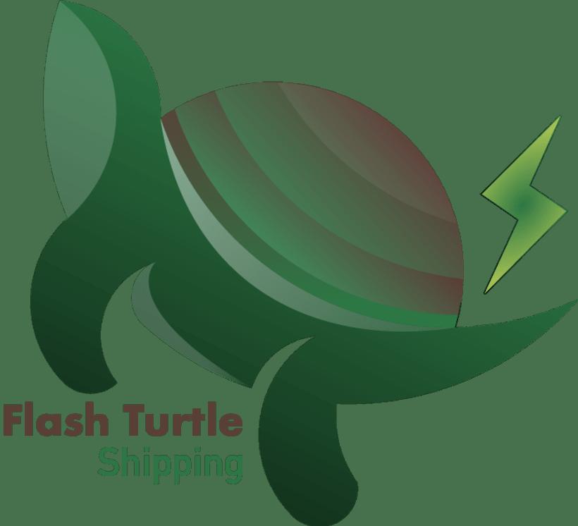 Branding Turtle Flash 0