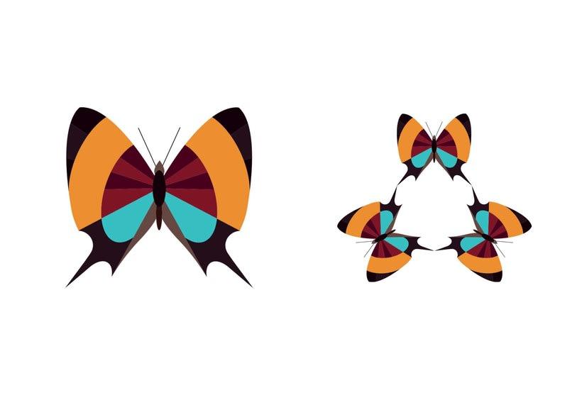 Serie - Gráficos con Mariposas 7