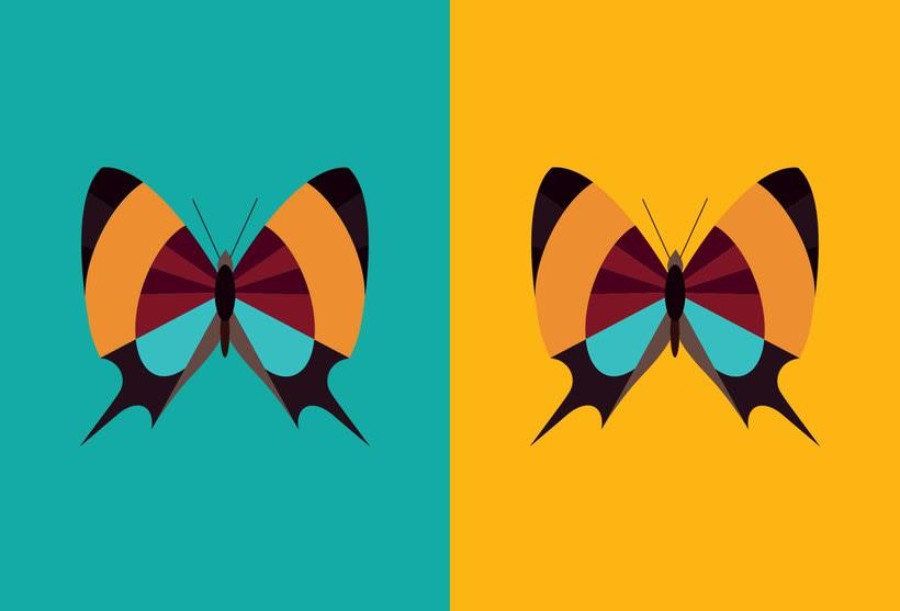 Serie - Gráficos con Mariposas 9
