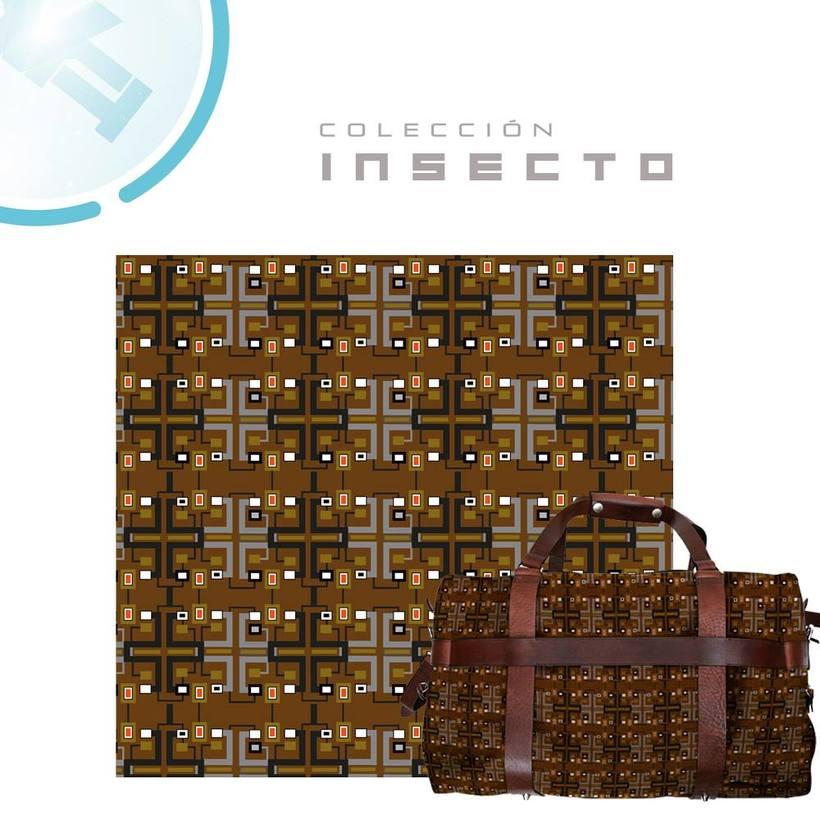 Coleccion INSECTO 2017 2