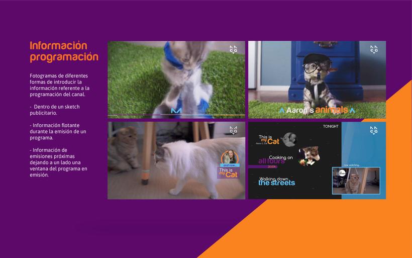 CAT- Branding Tv 9