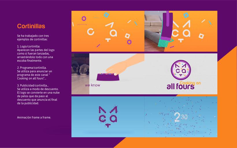 CAT- Branding Tv 8