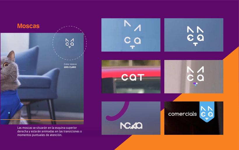CAT- Branding Tv 10