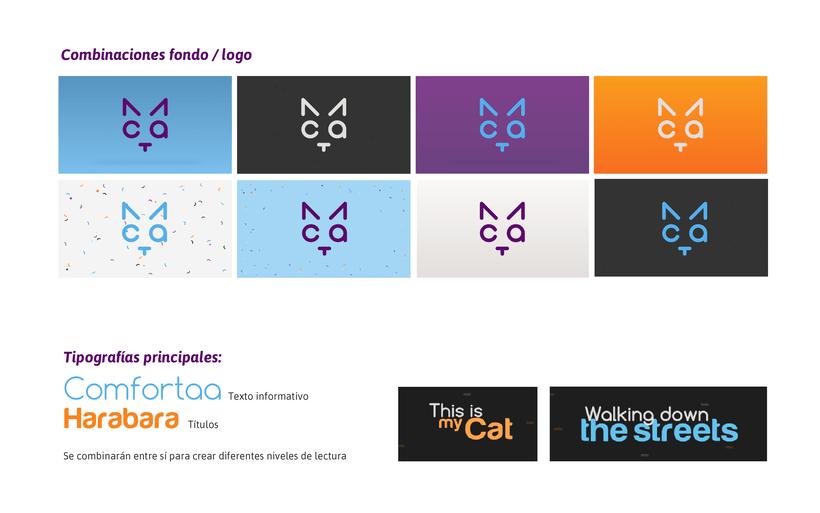 CAT- Branding Tv 5