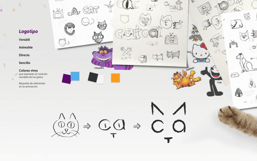 CAT- Branding Tv 3