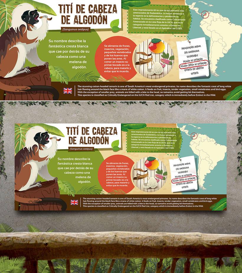 Ilustraciones para Rio Safari Elche 1