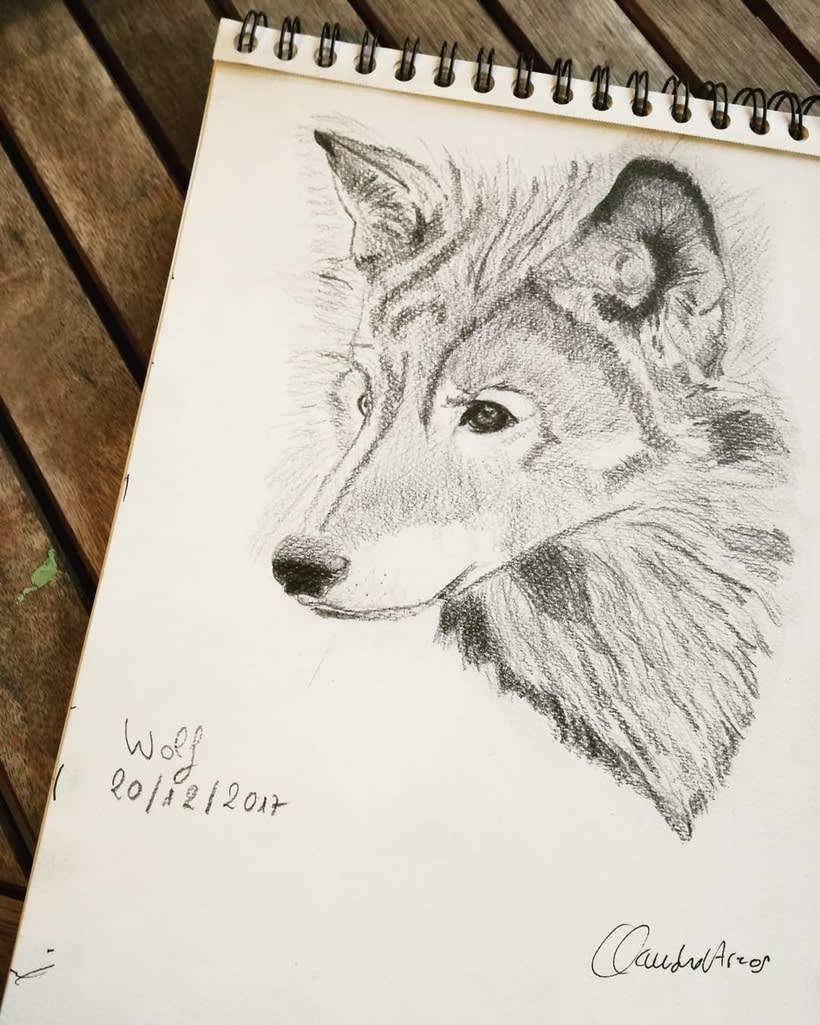 Ilustración Animales 1