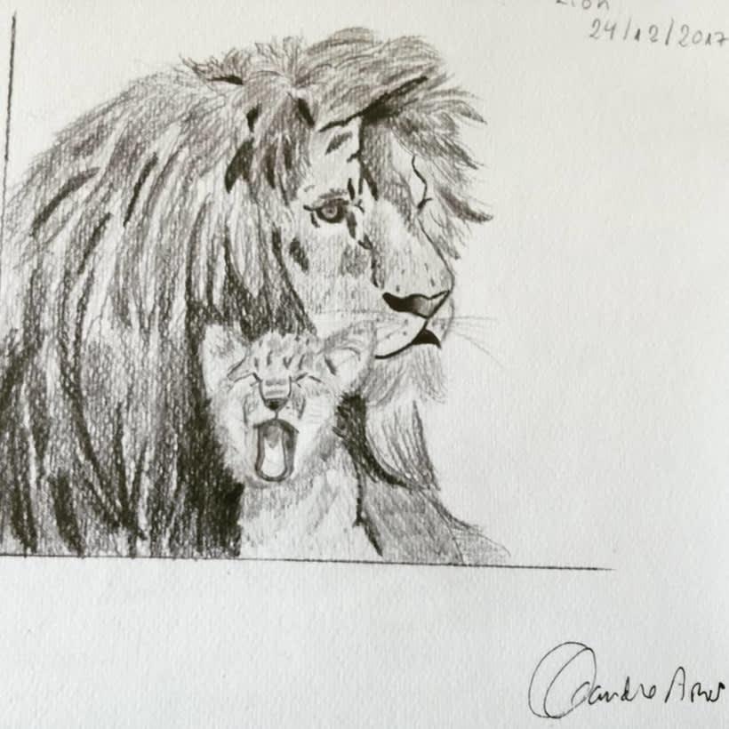 Ilustración Animales 2
