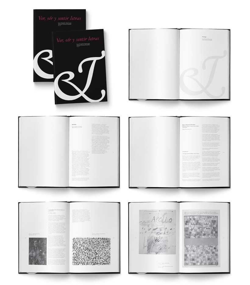 Libro «Ver, oír y sentir letras»  0