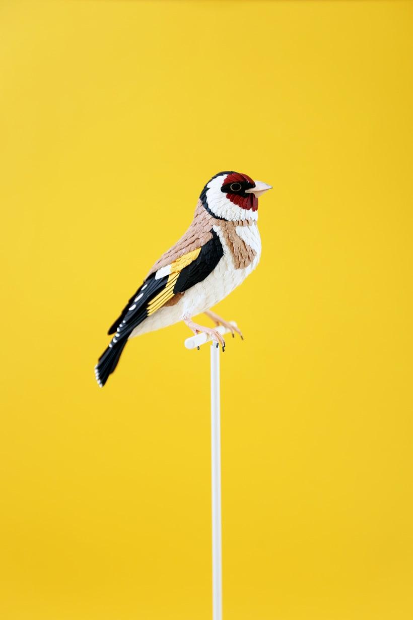 The bird lover.  5