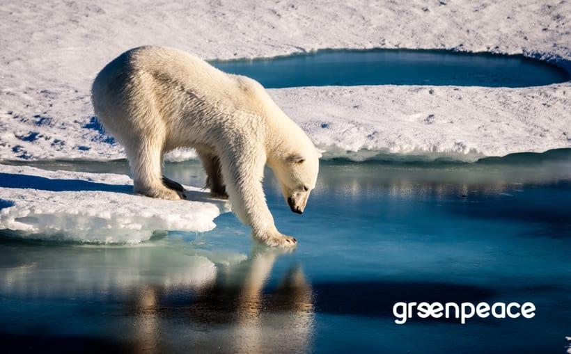 greenpeace | Rediseño de logotipo 11