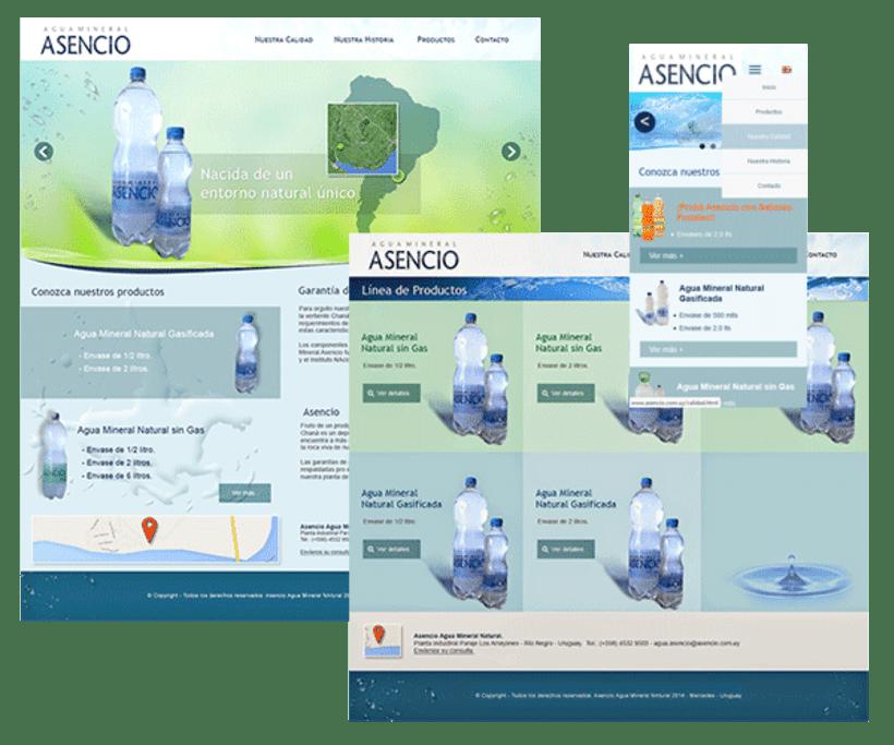 Diseño y Desarrollo Web - Web Design 0