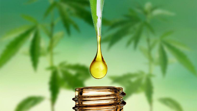 Image result for cbd oil for pain