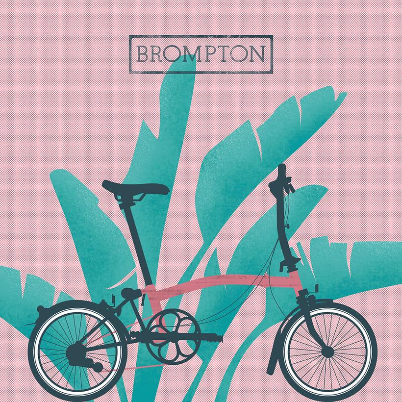 Brompton lovers 0