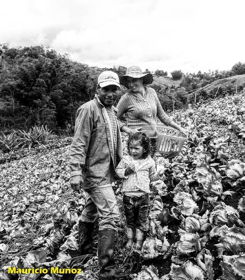 Los reales Colombianos de  bien.  8