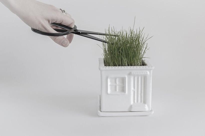 Mini Jardin 0