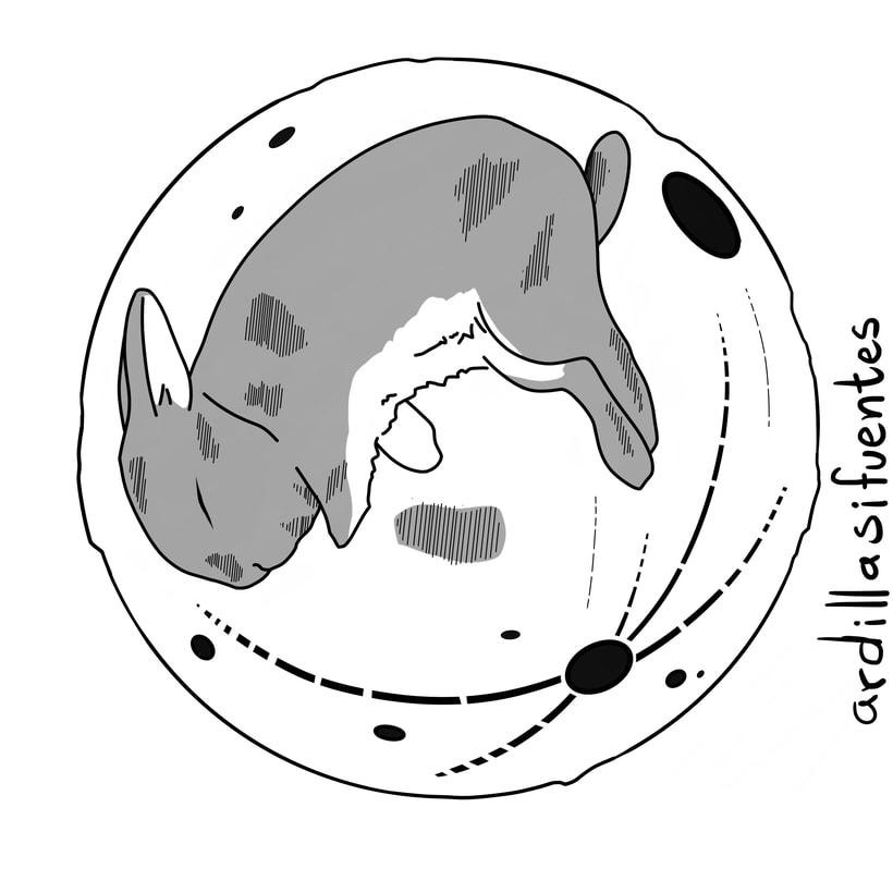 Diseños circulares -1