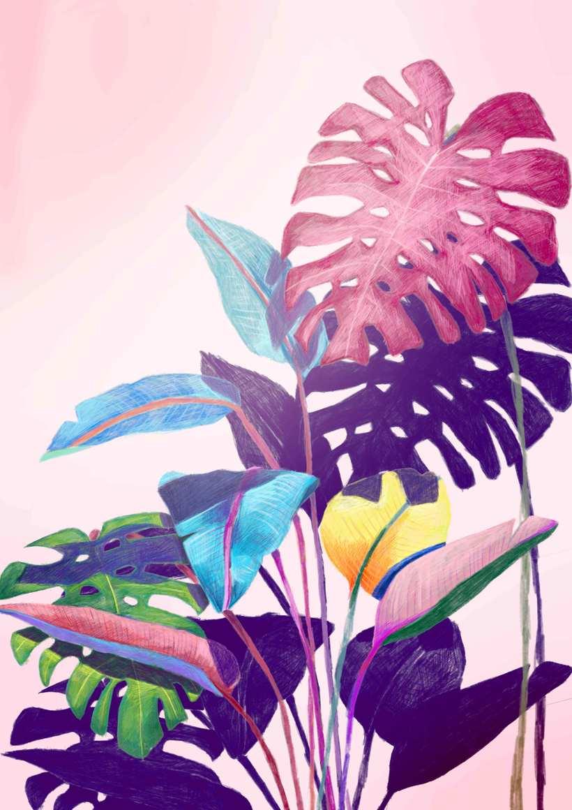 Mi Proyecto del curso: Ilustración digital con lápices de colores 0