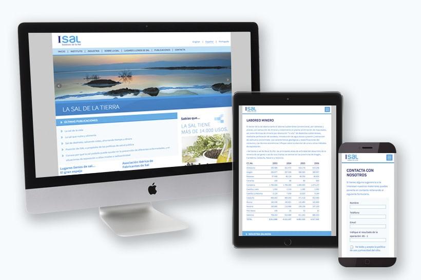 Diseño infografías sitio web de divulgación acerca de la sal 2