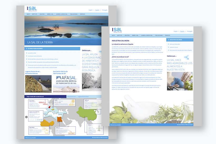 Diseño infografías sitio web de divulgación acerca de la sal 3