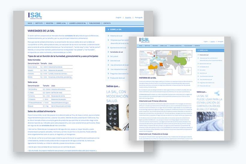 Diseño infografías sitio web de divulgación acerca de la sal 4