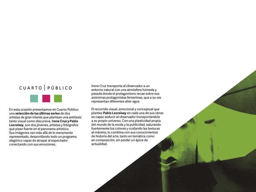 Dossier de Ingenio, IC para Feria de Arte Cuarto Público 1
