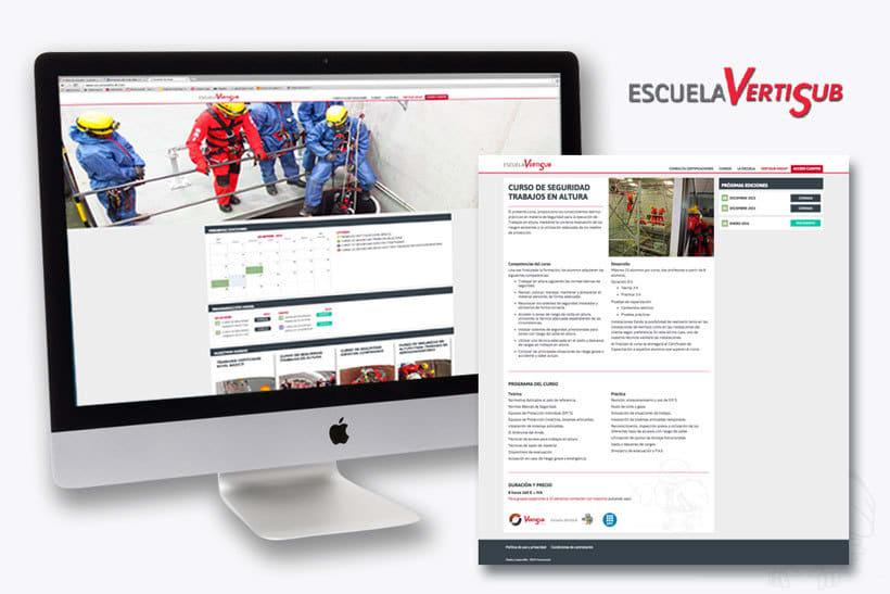 Diseño web, iconografía e infografías. Escuela Vertisub 1