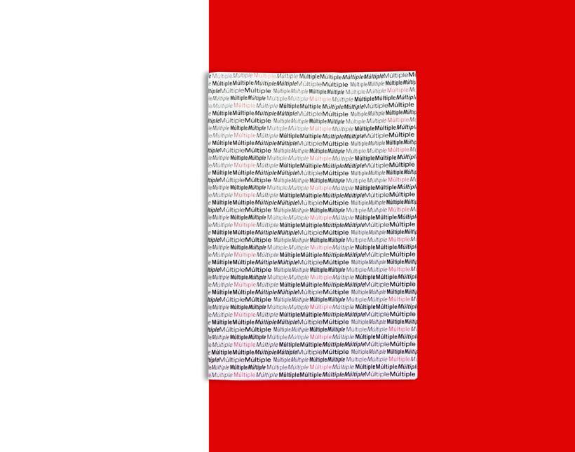 Múltiple_ Proyecto editorial 1