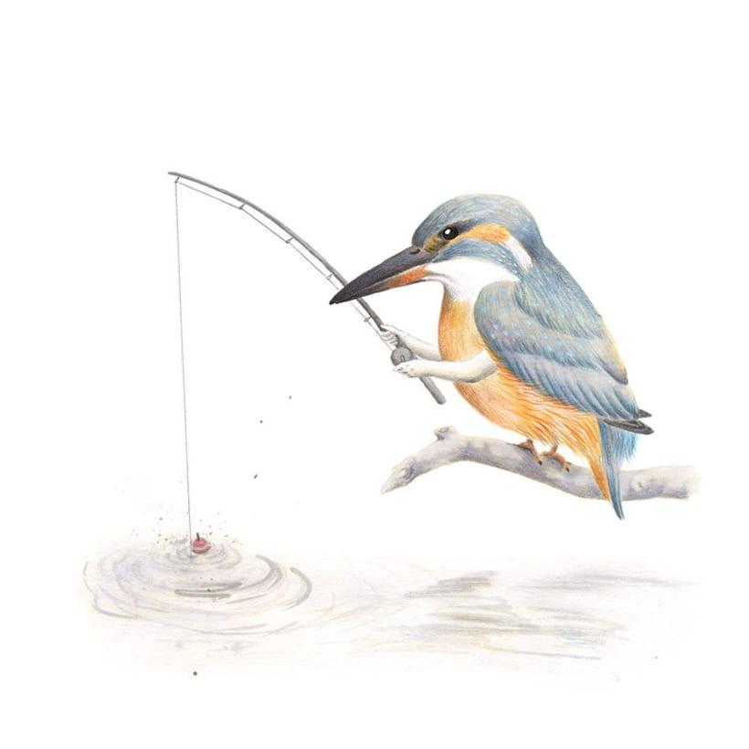 Aves 10