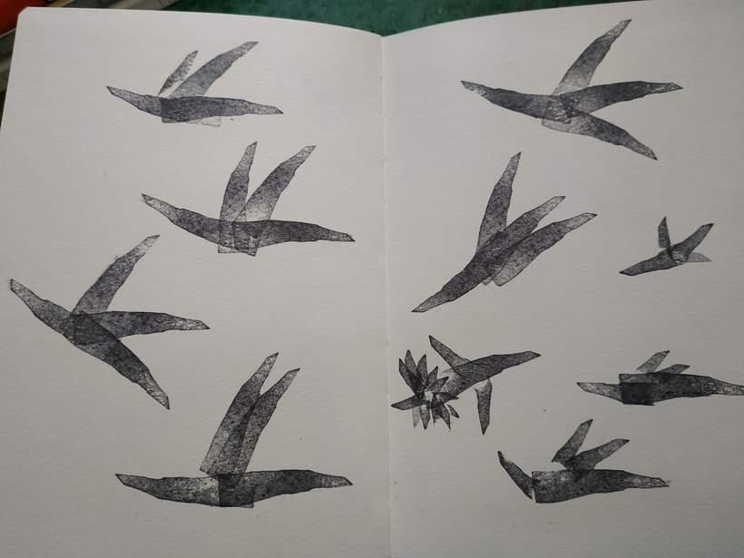 Un tejado se convirtió en una bandada de pájaros 1