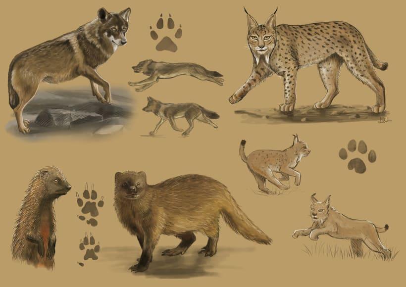 Animales 0