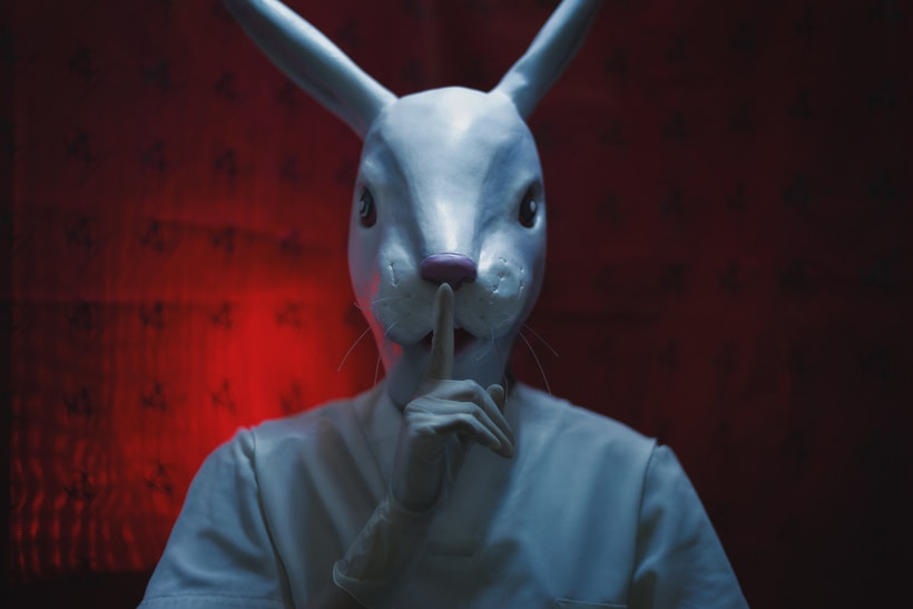 -The White Rabbit. 6