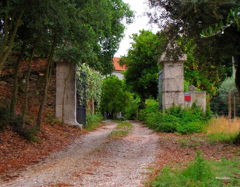 Viaje a Portugal. Parte IV : Peniche,  Óbidos y Tomar 28